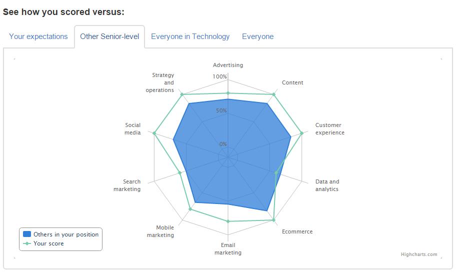 Digital Skills Index Lite Alexander Levashov results